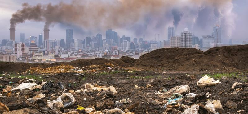 코로나, 기후위기, 그리고 인권
